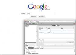 "Google ""Find Chuck Norris"" Selenium Test"